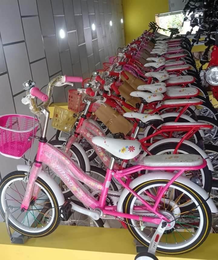 Mua Xe đạp trẻ em Hitasa 380