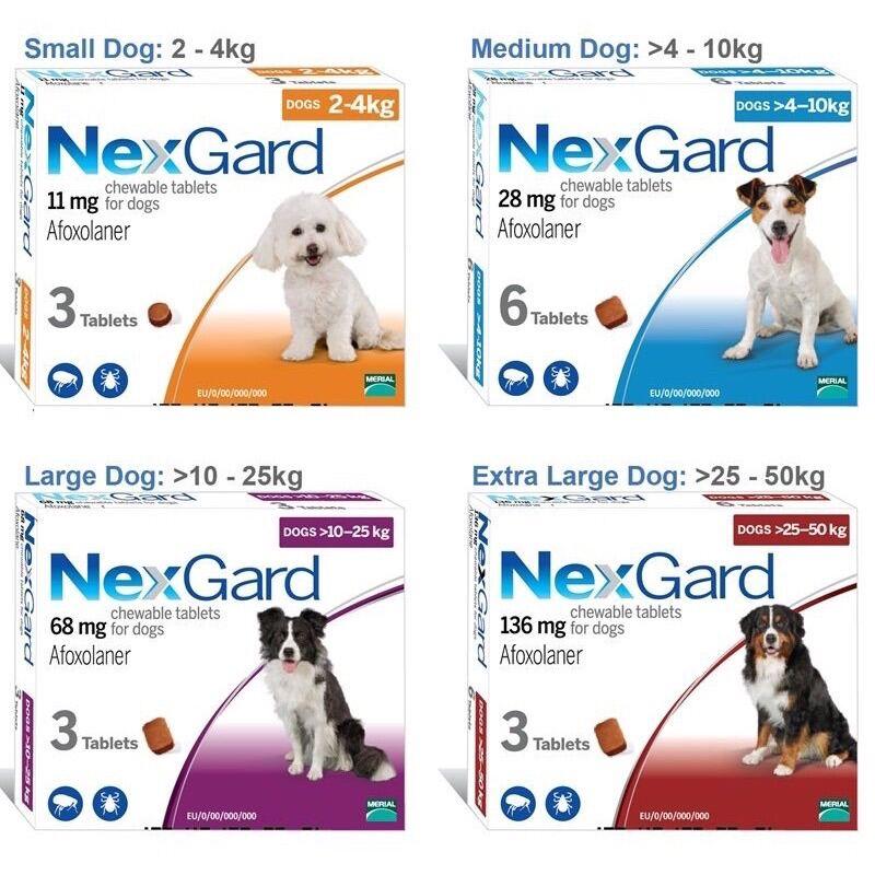 NexGard (1viên) - diệt ve rận, bọ chét ghẻ DEMODEX, SARCOPTES trên chó mèo
