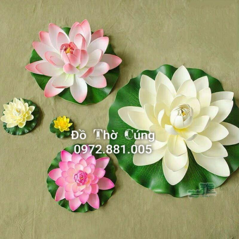 Hoa sen thả bể trang trí / thả hoa ban thần tài